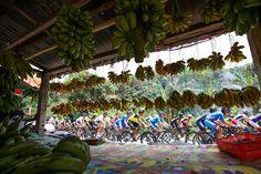 プロトンがバナナの屋台を通過: photo:Kei Tsuji