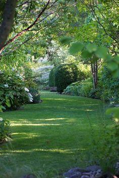 love this. wish my yard were like this
