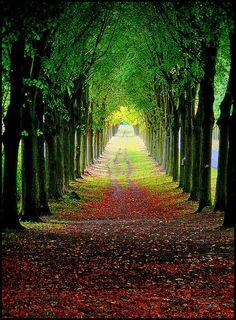 Hay túneles en la vida de los que no se desea salir...........