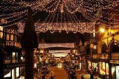 Chester's Christmas Lights