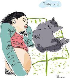 Amiga Cata en sus últimos días de embarazo, durmiendo siesta con gata Mota
