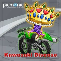The Crown-virus seems to be taking the Kawasaki-dirt-bike for a ride. 👑 Some cases of COVID-19 have been reported to have developed multisystem inflammatory syndrome in children (MIS-C). This syndrome is very similar to Kawasaki disease. This medium-small vessel disease is characterized by extensive, systemic inflammation of vasculature including arterioles, venules, and capillaries. Learn more about Kawasaki disease with Picmonic!