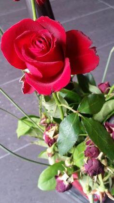 Casual Sundays | Fresh flowers die...
