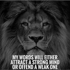 The daily quotes for inspiration and motivation is presented in the post. The daily quotes will motivates and inspires you. These quotes will motivates you. Wisdom Quotes, True Quotes, Words Quotes, Sayings, Qoutes, Art Of War Quotes, Ptsd Quotes, Deep Quotes, Famous Quotes