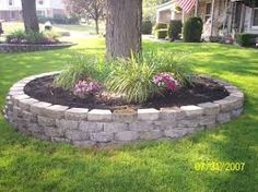 1000 images about landscape around trees on pinterest for Landscaping rocks under trees