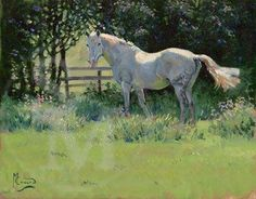 malcolm coward horse painter - Google Search