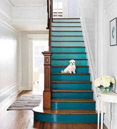 Why not have your stairs painted turquoise (or your favourite colour)? Ombre is a fun choice. | Mulberry Interiors- Interior Designer
