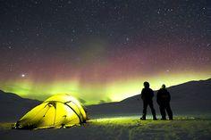 Auroras, Camp, Tent, Adventure