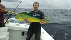 Nice dolphin caught on our sportfishing charter today in Fort Lauderdale.  Let's go fishing! www.fishheadquarters.com