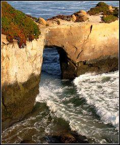 Santa Cruz, California Coast Masterpiece, Nature's Natural Landscape Sculptures
