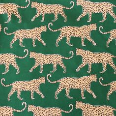 Jill Triana - coral leopard print pillow covers, coral decor, bright decor, leopard print, cheetah p Cat Wallpaper, Print Wallpaper, Pattern Wallpaper, Fabric Wallpaper, Pattern Art, Pattern Design, Green Pattern, Textures Patterns, Print Patterns