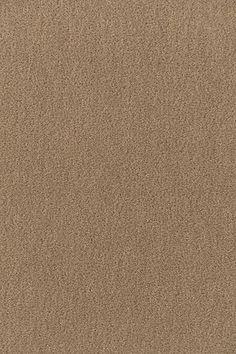 64885 San Carlo Mohair Velvet Sparrow by Schumacher Fabric Drapery Fabric, Fabric Decor, Fabric Design, Mohair Fabric, Cotton Fabric, Sage Color, Velvet Color, Custom Made Furniture, New Carpet