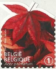 belgian stamps Three Leafs - self adhesive.- 'Acer palmatum'