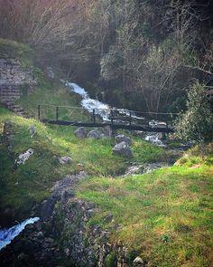 Después de las intensas lluvias de estos días te encuentras paisajes como este junto a la carretera. Puente Viesgo  #puenteviesgo #cascada #cantabriasan #cantabria #turismo #cantabriayturismo #cantabria_y_turismo #cantabriainfinita #cantabros #cantabricamente #cantabriaverde #cantabriarural #igerscantabria #paseucos #paseúcos #cantabriamola #igercantabria #igcantabria #fotocantabria #follow #picoftheday #instapic #fotodeldia #pasionporcantabria #naturalezacantabria #natura_cantabria Esta…