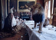 Articles - Tim Walker Photography  Interview with Tim Walker