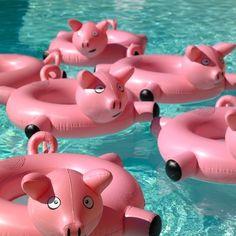 e enfant Piggy. Fill your pool party with fun piggy floats This Little Piggy, Little Pigs, Summer Pool, Summer Fun, Piscina Diy, Cool Pool Floats, Funny Pool Floats, My Pool, Pool Fun