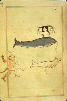Le figure dei libri » Blog Archive » Meraviglia delle creature e di tutte le cose strane esistenti. Persia 1537