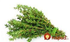 Nech bol kašeľ akokoľvek silný, toto zabralo vždy: Neuveriteľne silný tymianový sirup proti kašľu a boľavému hrdlu! Herbs, Health, Garden, Repelent, Food, Syrup, Garten, Health Care, Lawn And Garden