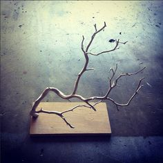 DIY jewelry stand made out of Manzanita branches and Birch wood