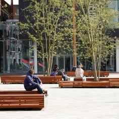 Levendig plein met zitelementen en boombescherming ineen