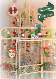 Budgie Christmas Cage by Corrie Milly - Celebrating the Holidays with my English Budgies Lemonade & Evergreen