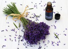 12 Ways To Use Lavender for Good Feng Shui: 5. Lavender Essential Oil