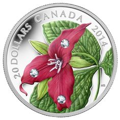Canada 20 Dollars Silver Coin 2014 Red Trillium with Swarovski Crystal Dew Drop Elements Silver Coins For Sale, Canadian Coins, Gold Bullion, World Coins, Canadian Artists, Rare Coins, Blossom Flower, Coin Collecting, 1 Oz