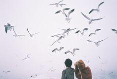 Stare insieme