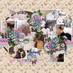Layout using {Purrrfect} Digital Scrapbook Kit by Jocee Designs available at Gingerscraps and The Digichick http://store.gingerscraps.net/Purrrfect-Digital-Kit.html http://www.thedigichick.com/shop/Purrrfect-Digital-Kit.html #joceedesigns