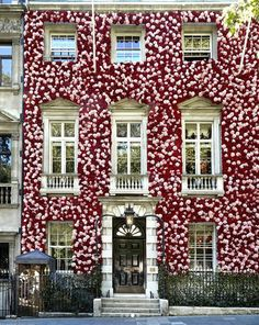Annabel's Mayfair London flowers for RHS Chelsea Flower Show Chelsea Flower Show 2018, Flowers London, Building Management, Mayfair London, West London, Flower Installation, Amazing Decor, Flower Quotes, Commercial Interiors