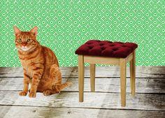 Katten / poezen: naast Dog Cat, School, Dogs, Projects, Speech Pathology, Perspective, Log Projects, Blue Prints, Pet Dogs