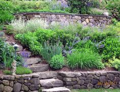 terraced hardscape