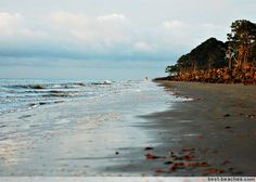 Jekyll Island Beaches                  ~ Georgia Golden Isles
