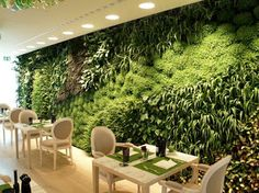 Badì Design/ News: Giardini in verticale... capolavori vegetali