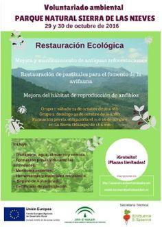 Agenda ecológica - Ferias ecológicas, cursos, talleres | ECOagricultor
