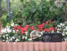 a memory garden for pets who have passed away it would be so simple but