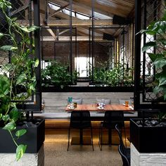 Make your restaurant look its best with fake plants, green walls, urban furniture, and our the vision of our experienced design team. Cafe Interior Design, Retail Interior, Commercial Interior Design, Cafe Design, Commercial Interiors, Interior And Exterior, House Design, Cafe Restaurant, Restaurant Design