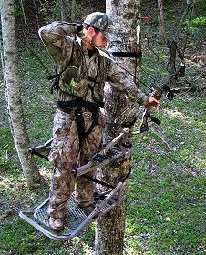 Tree Stand Tree Stands Feature The Comfortable
