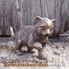 Dierenbeeld van een staand poesje. Dit beeld is zowel binnen als buiten te plaatsen. #kattenbeeld #beeld kat #bronzen kat #beeld poes #tuinbeeld kat Kat, Seeds