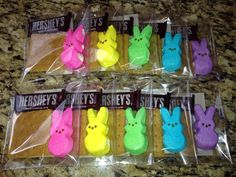 Easter Bunny Peeps S'mores Kit