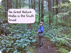 Ten Nature Walks - Tacoma / Olympia #nwtrips