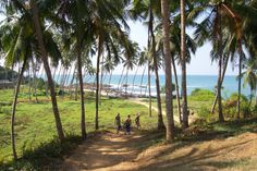 Trail to the Indian Ocean