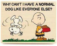 Entonces no sería Snoopy.. jeje