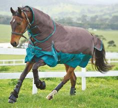 Original 1200D Medium Detach-A-Neck Turnout Horse Blanket. Pretty. Mine is boring black and gold. M