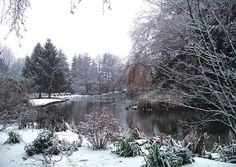 SECRET POND  Nestled around a lake, an early snowfall catches its reflection. - See more at: http://greetingcardcollection.com/products/holiday-cards-nature-scenic/721-secret-pond