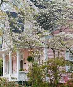 Spring at Cherryblossom Cottage !