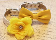 Yellow Wedding Dog Collars Two Chic Spring Wedding by LADogStore, $65.50