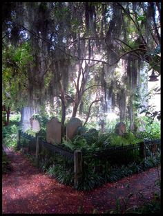 Unitarian Church in Charleston - this graveyard is haunted by Lavinia Fisher, the first female serial killer in the US. She was executed by hanging on February 18th, 1820 while wearing her wedding dress. The Unitarian Church was the only one that would accept her body. Her grave is located in the far corner of the cemetery, marked by only a stone with her last name and the year she was buried.