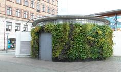 Genombrott för levande väggar utomhus