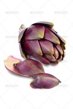 Realistic Graphic DOWNLOAD (.ai, .psd) :: http://sourcecodes.pro/pinterest-itmid-1006799421i.html ... artichokes on white background ...  Artichokes, agriculture, background, food, fruits, isolated, raw, studio, vegetables, white, white background, whole  ... Realistic Photo Graphic Print Obejct Business Web Elements Illustration Design Templates ... DOWNLOAD :: http://sourcecodes.pro/pinterest-itmid-1006799421i.html